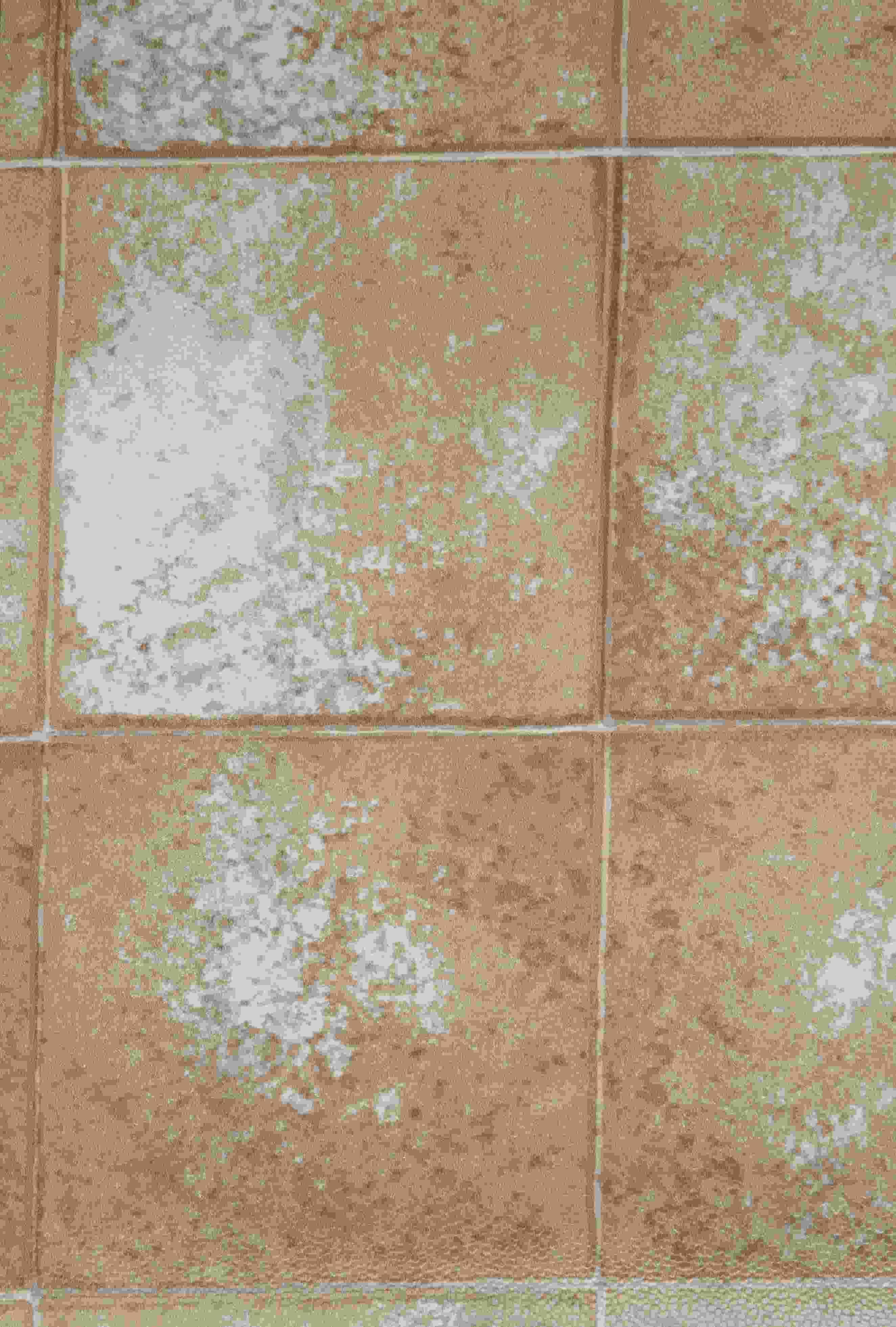 Piastrelle Plastica Da Esterno.Articoli Per Il Giardino E L Arredamento Di Esterni Arredamento Da