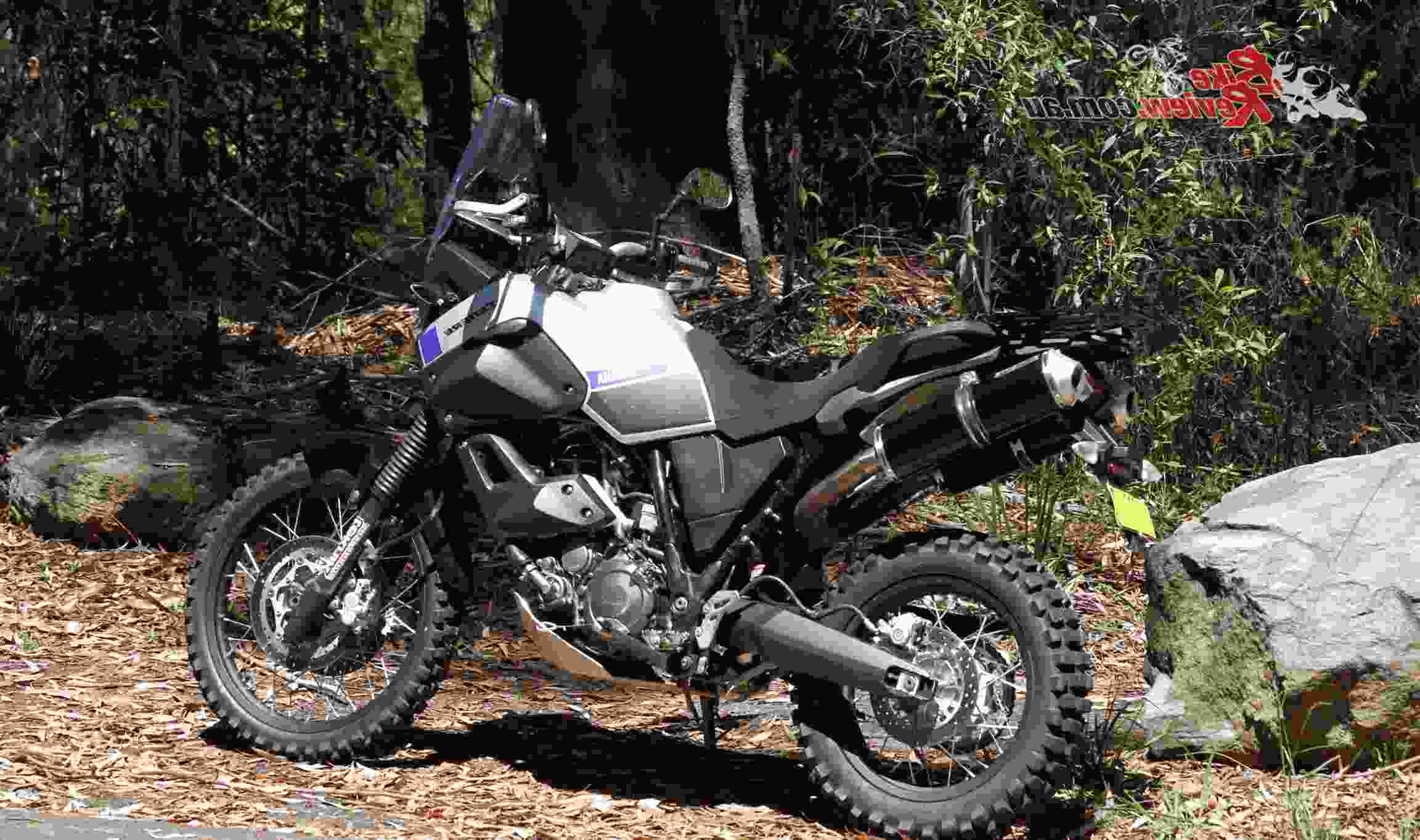 MTSBW Motocross Senza Maniche Armor Chest Protector Back Guard Leggings Ciclismo//Sci//Snowboard//Pattinaggio E Altri Sport Estremi