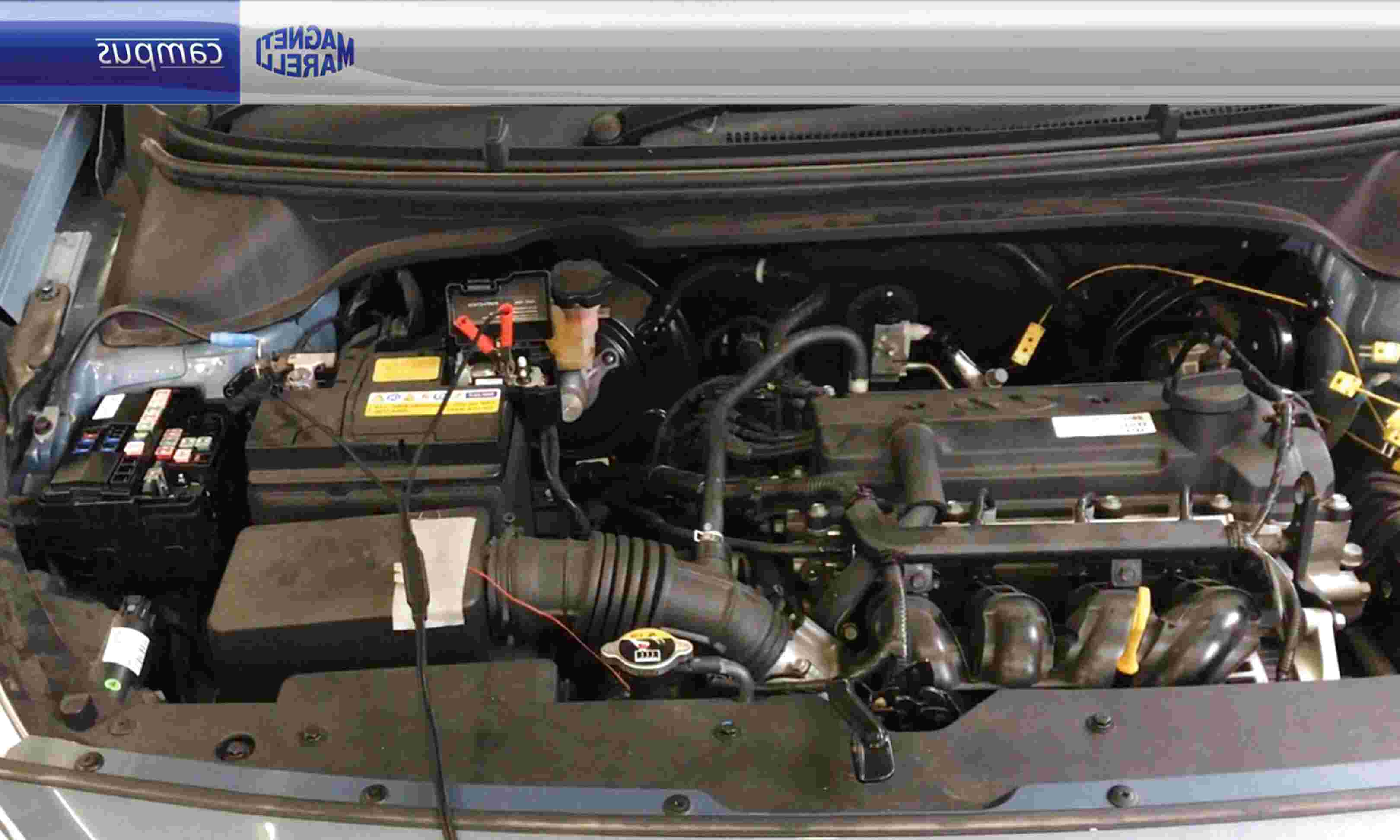 FIAT GRANDE PUNTO 199 1.3 D Multifiamme cambiare Anteriore ABS Sensore Di Velocità Della Ruota