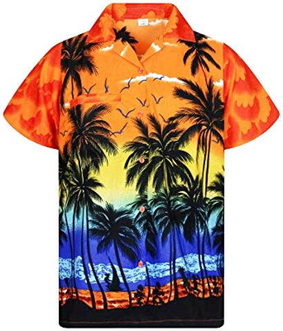 camicia hawaiana usato