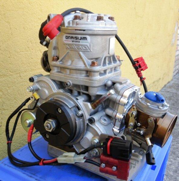 go kart 125 motore usato