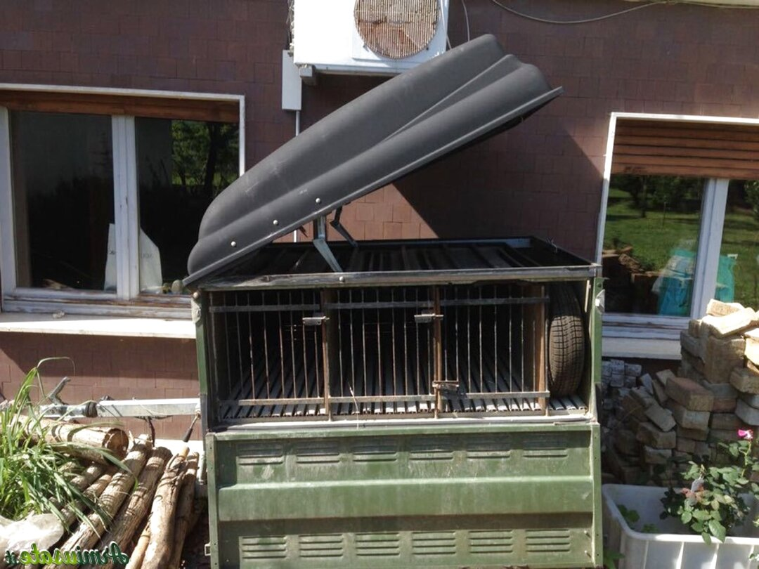 carrelli trasporto cani usato