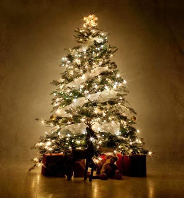 Albero Di Natale Usato.Alberi Natale Usato In Italia Vedi Tutte I 53 Prezzi