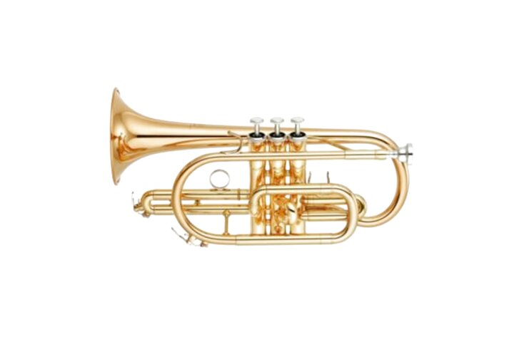 cornetta yamaha usato