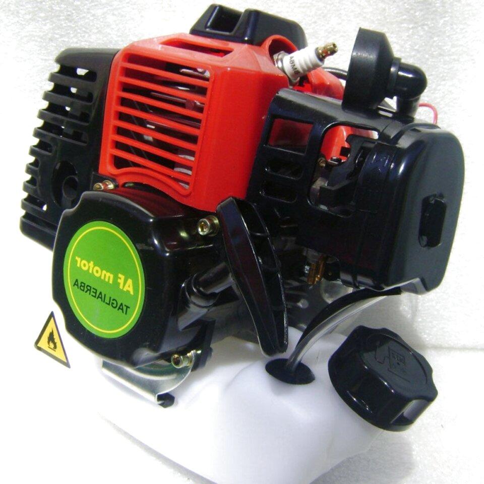 blocco motore decespugliatore usato