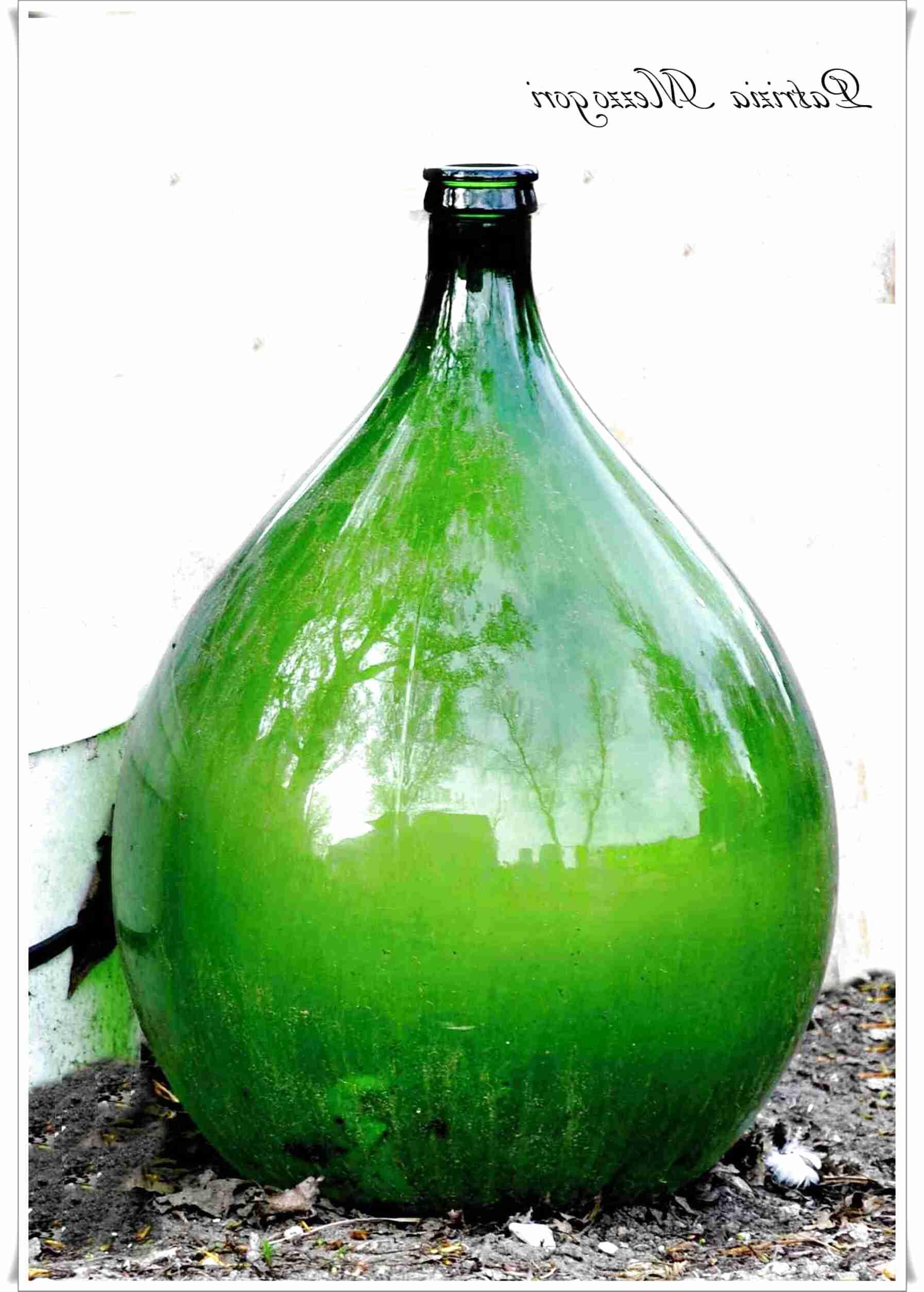 Arredare Con Le Damigiane bottiglioni usato in italia | vedi tutte i 52 prezzi!