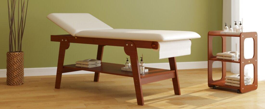 Lettino Da Massaggio Portatile In Alluminio.Lettino Da Massaggio Professionale 3 Zone In Alluminio