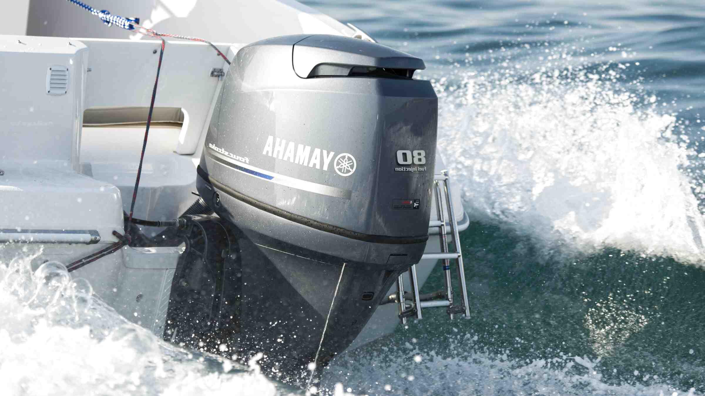 motore fuoribordo yamaha 6 cv usato