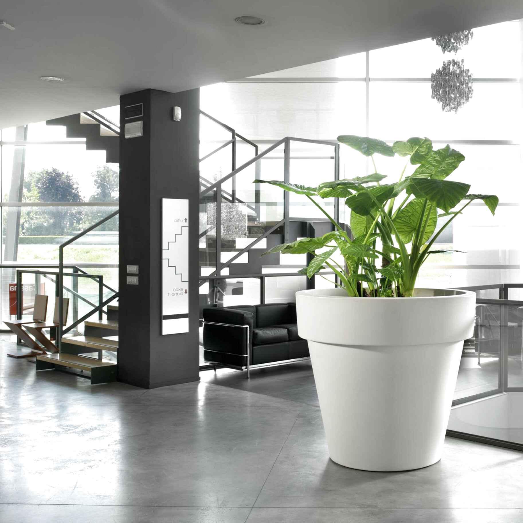 Vasi Per Piante Da Terrazzo vasi giardino grandi usato in italia | vedi tutte i 50 prezzi!